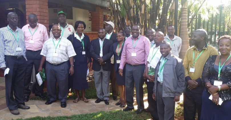 Bamboo Propagation Technology and Farm Management at Fairview Hotel, Bishop Road-Nairobi, KENYA.